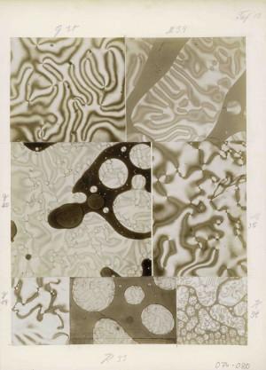 Otto Lehmann: Sieben Aufnahmen zur Tropfenbildung von Flüssigkristallen, aufgenommen mit einem Projektions-Kristallisationsmikroskop, 29 x 21 cm, Silbergelatine, um 1904.