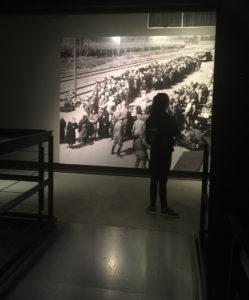 Bildraum und Ausstellungsraum – Reenactment und Immersion?